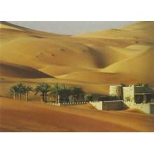 Fondo desierto y palmeras 70x50 cm papel