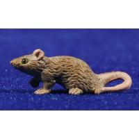 Rata 3,5 cm plástico