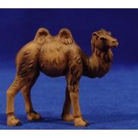 Camello 4 cm resina