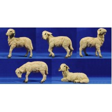 Grupo corderos 50 cm resina