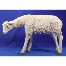 Cordero 60-80 cm resina