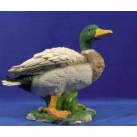 Pato color 160 cm resina